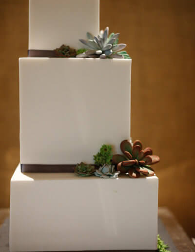 Modern square wedding cake with sugar succulents
